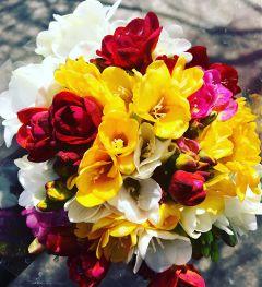 flowers freetoedit