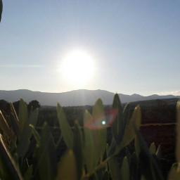 freetoedit sun photography nature original