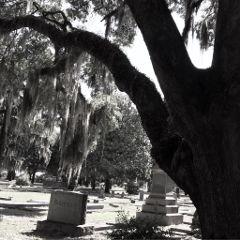 old graveyard blackandwhitephotography