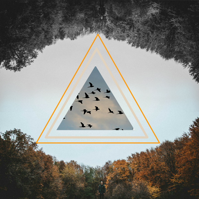 #nature  #emotions  #collage #remixgallery  #remixed  #remix  @carolinamagaligerez
