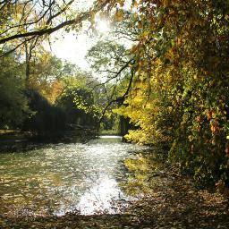 autumn autumnleaves autumncolors autumnscenery autumnlove