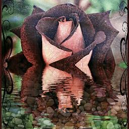 picsart madewithpicsart beautiful beautifypicsart madebyme