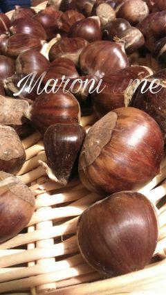 maroni food autumn wapaddtext